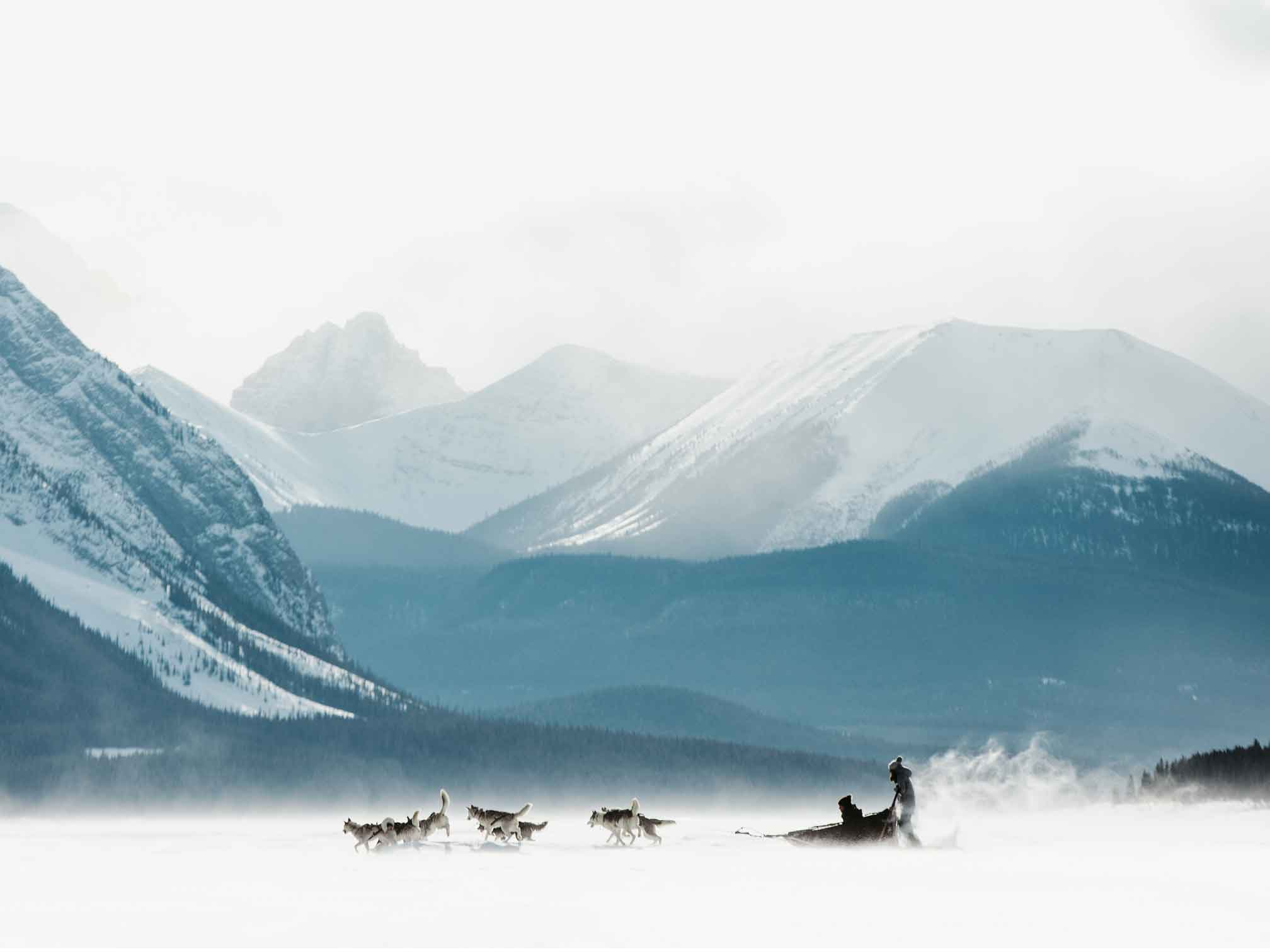 Dog sledding at Spray Lakes is a great way to get outside and play. Photo by Mike Seehagel