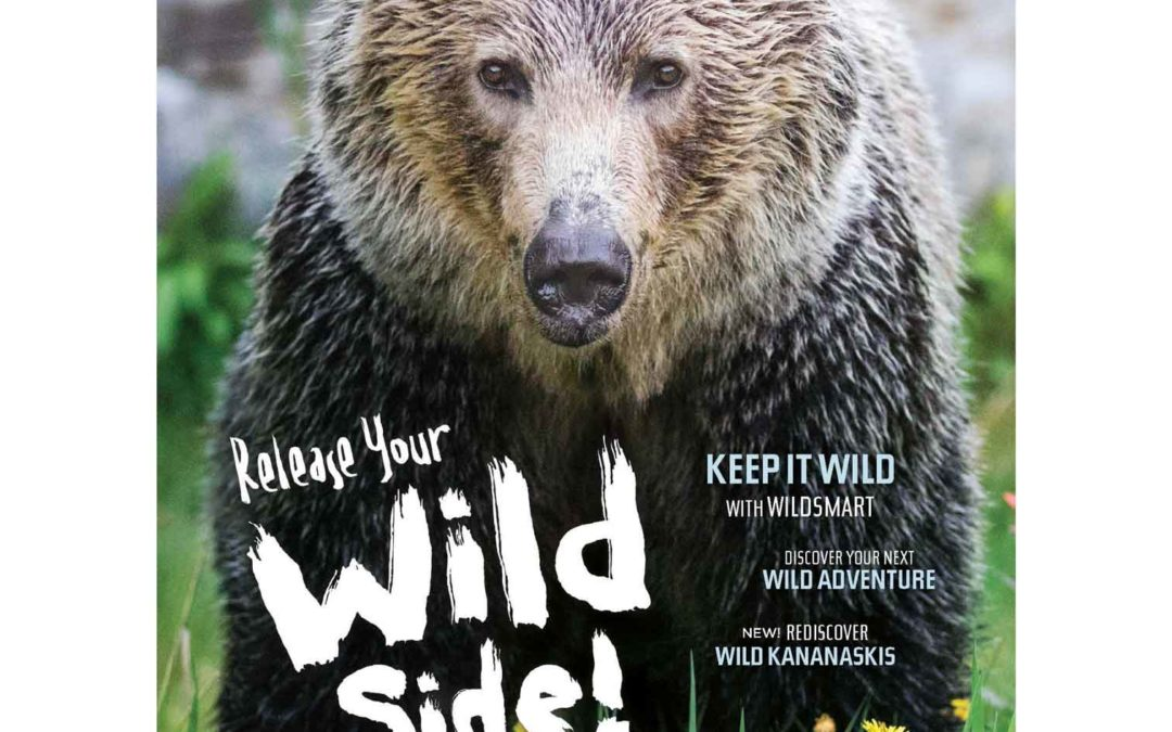 Bears on the Cover of Where Canadian Rockies