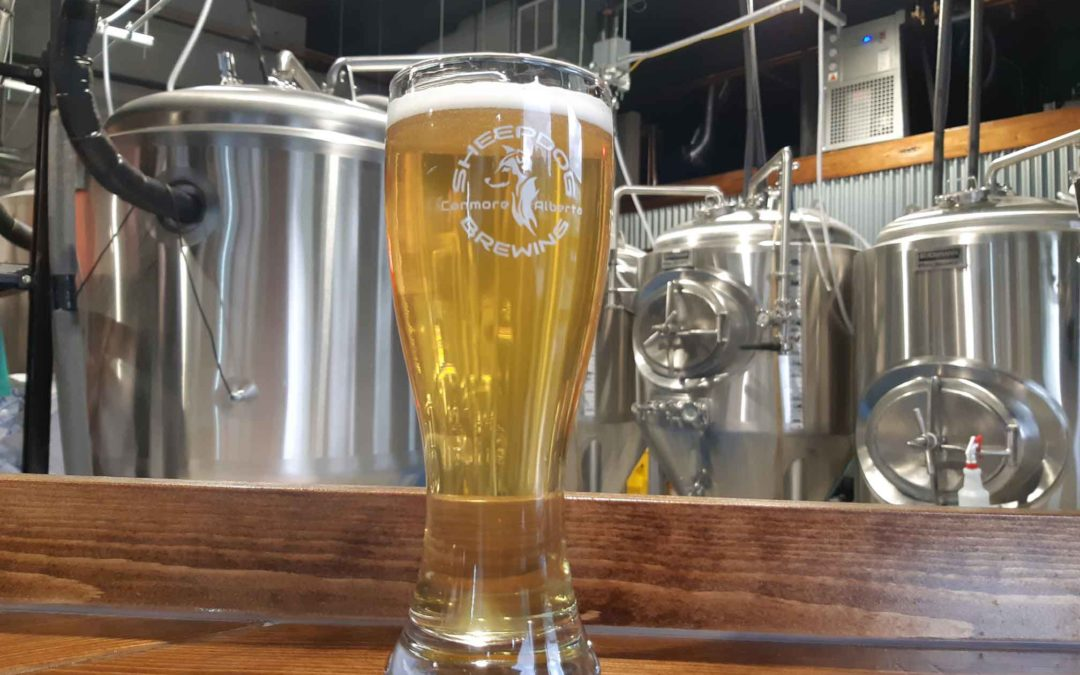 A Taste of Breweries and Distilleries in Canmore