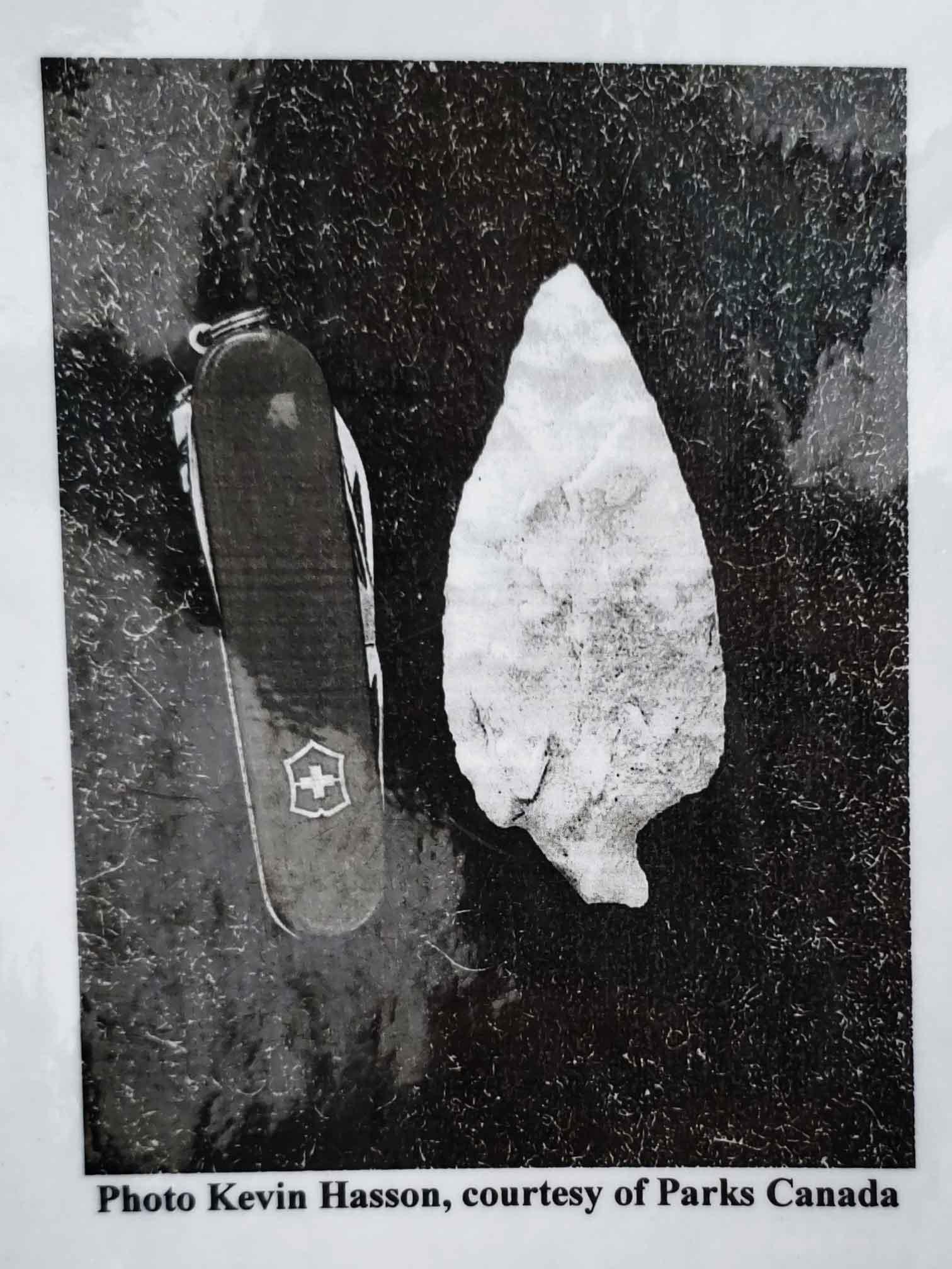 Arrowhead found in Jasper