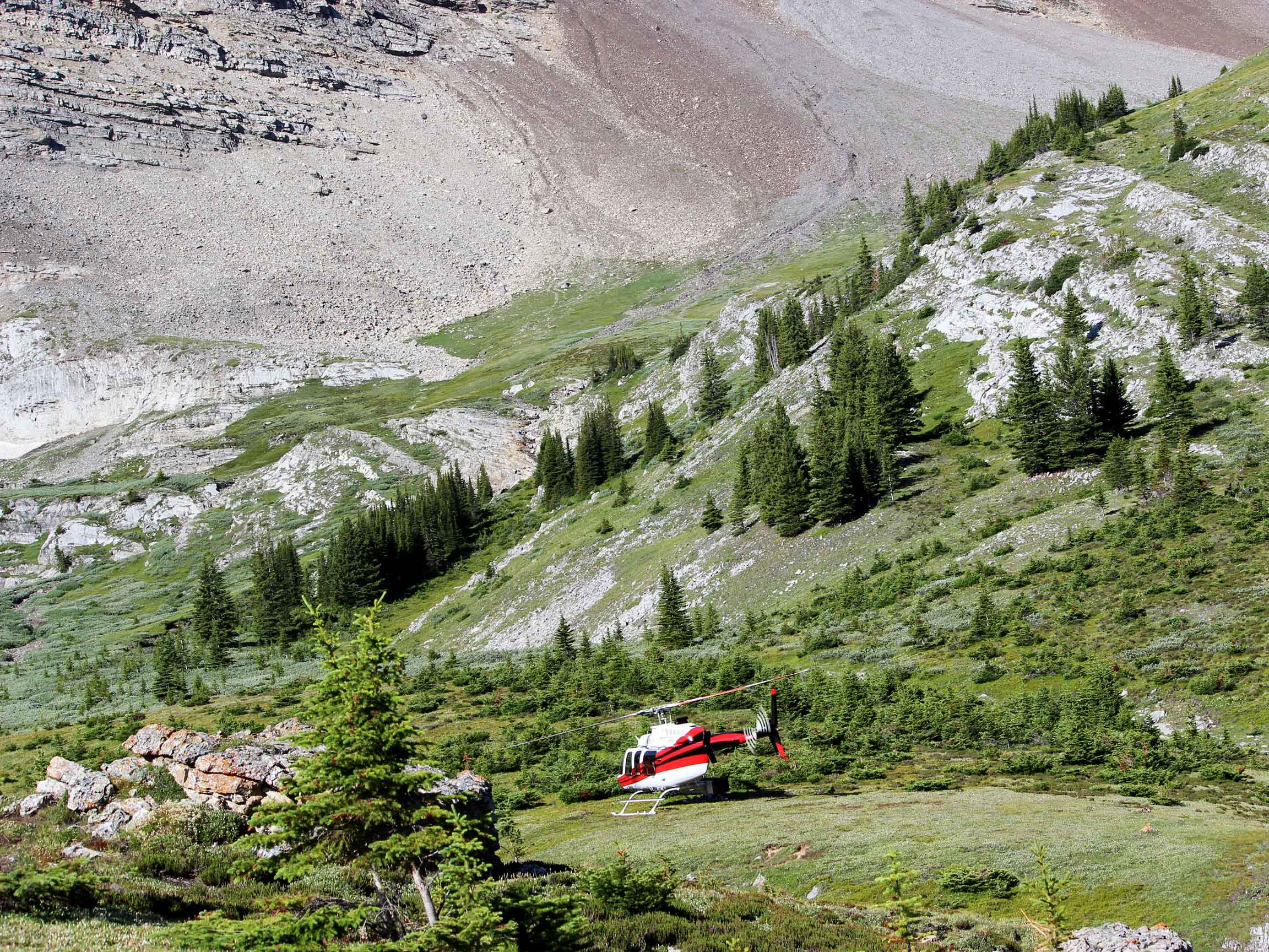 White Mountain Adventures Alpine Helicopters backcountry drop off