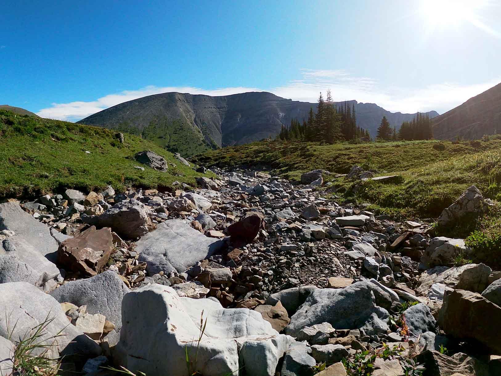 White Mountain Adventures Heli Hike scenery
