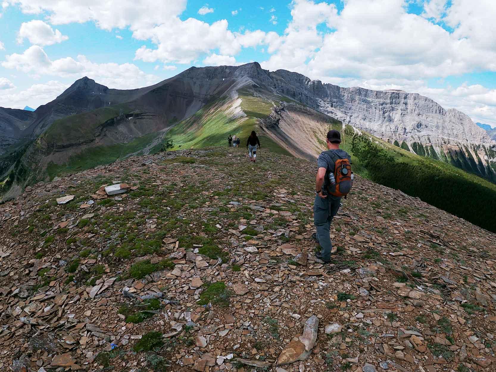 White Mountain Adventures Heli Hike Ridge