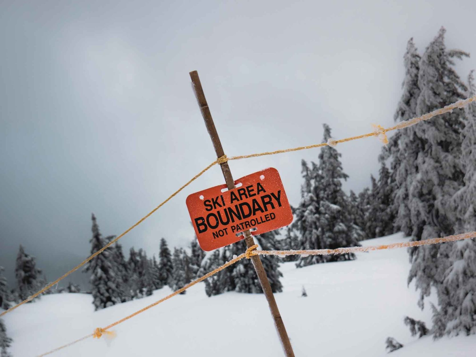 Avalanche Safety in the Mountains: Know Before You Go Main Photo