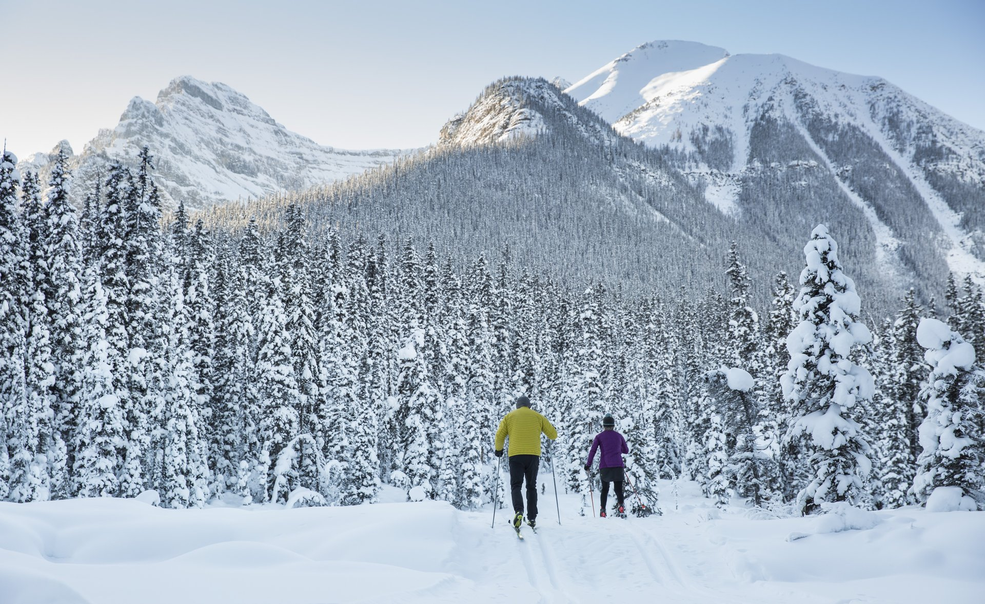 Canadian Rockies Ski Guide Cross Country