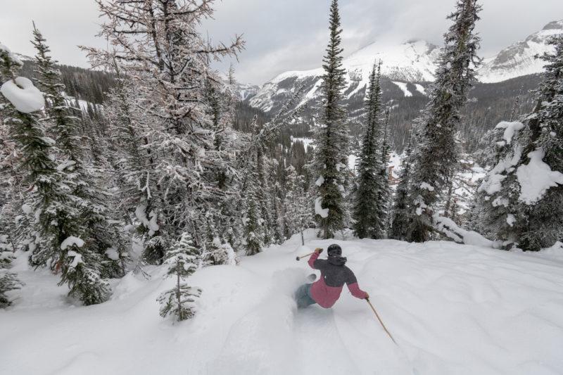 An alpine skier enjoys ski season