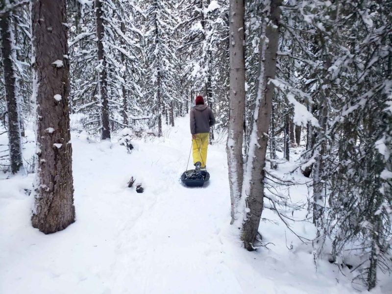 Walking through the trees pulling a sled on a winter adventure